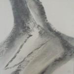Fusain 2008 - 44 x 42 cm