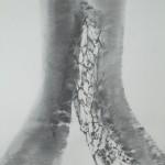 Fusain 2009 -100x 70cm